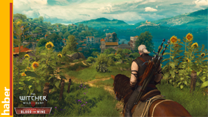 the-witcher3-blood