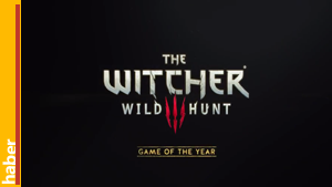 the-witcher-edition